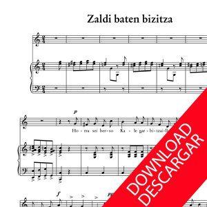 Zaldi baten gainean - Letra Indalezio Bizkarrondo, Bilintx
