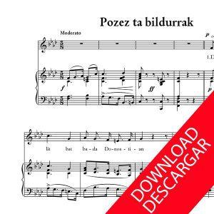 Pozez ta beldurrak - Fabian de Furundarena - Indalezio Bizkarrondo, Bilintx
