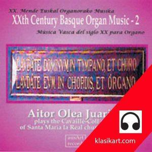 Órgano vasco del siglo XX - 2 - Aitor Olea